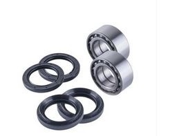 Honda TRX 650/680 Rear Wheel Bearings Set